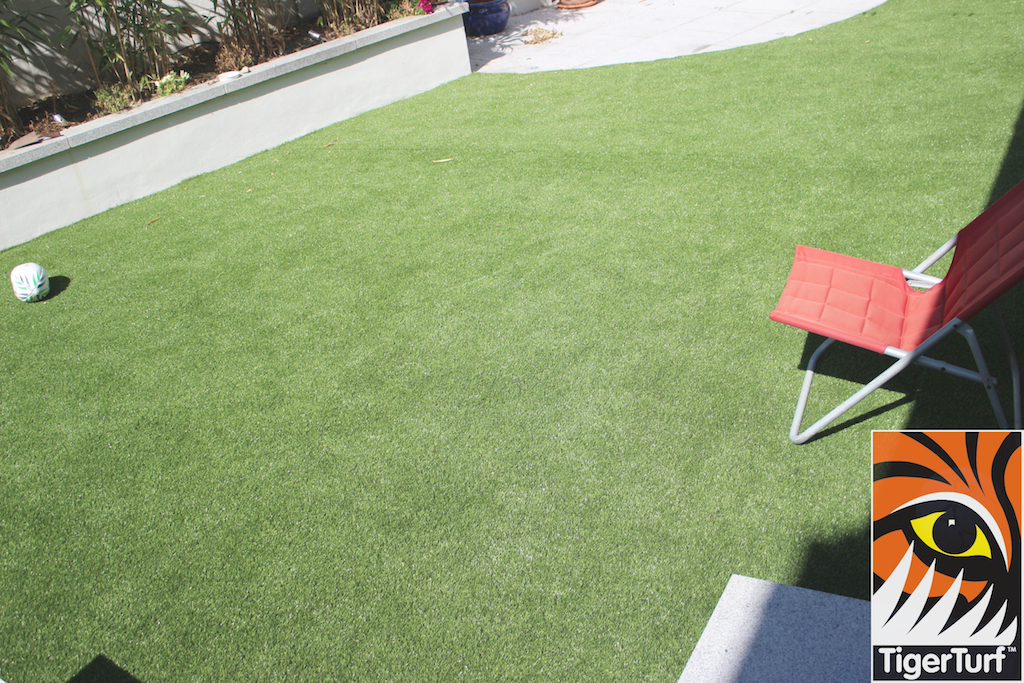 TigerTurf and Deck Chair
