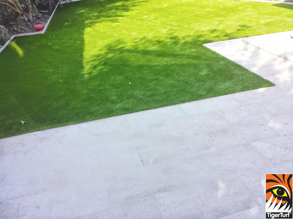 TigerTurf grass in back Garden
