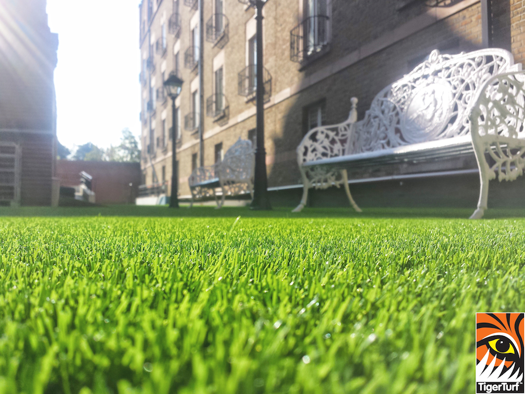 close up of TigerTurf and bench