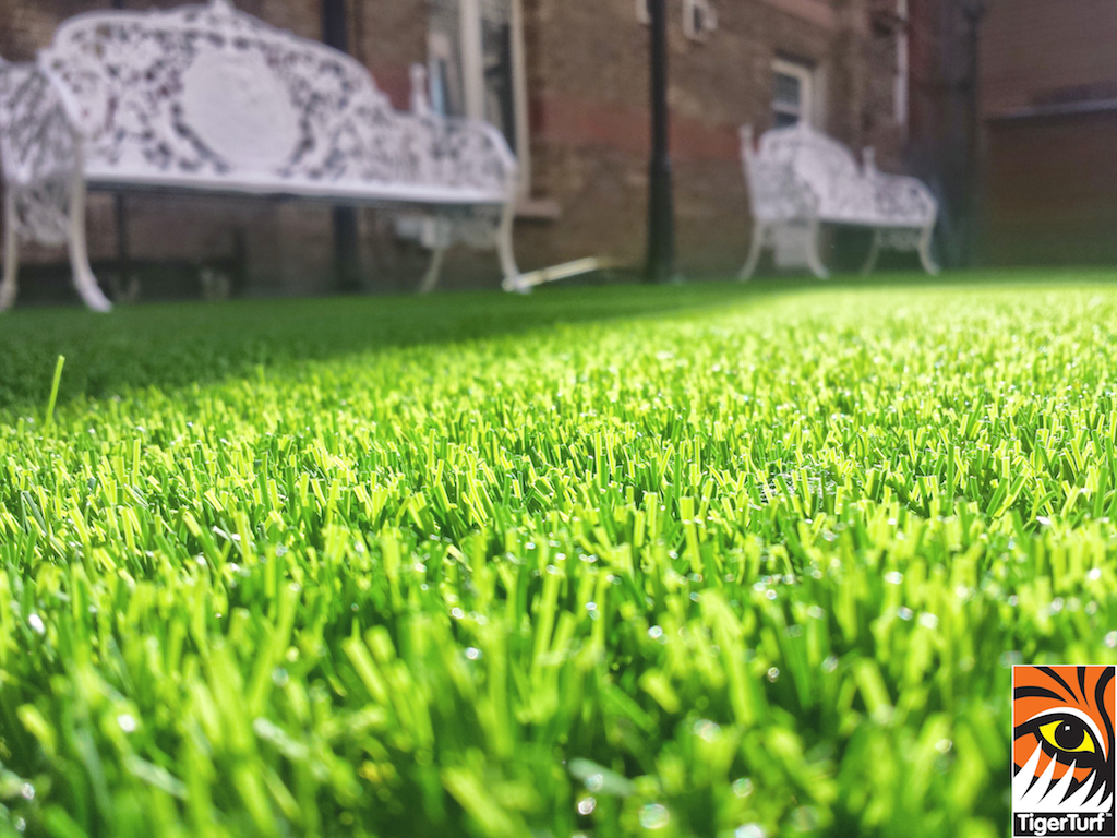 close up of courtyard in TigerTurf synthetic lawn