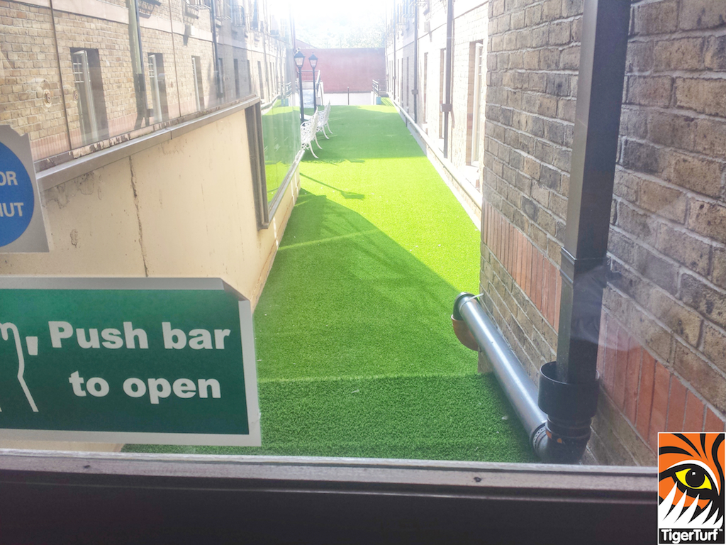 artificial grass through door