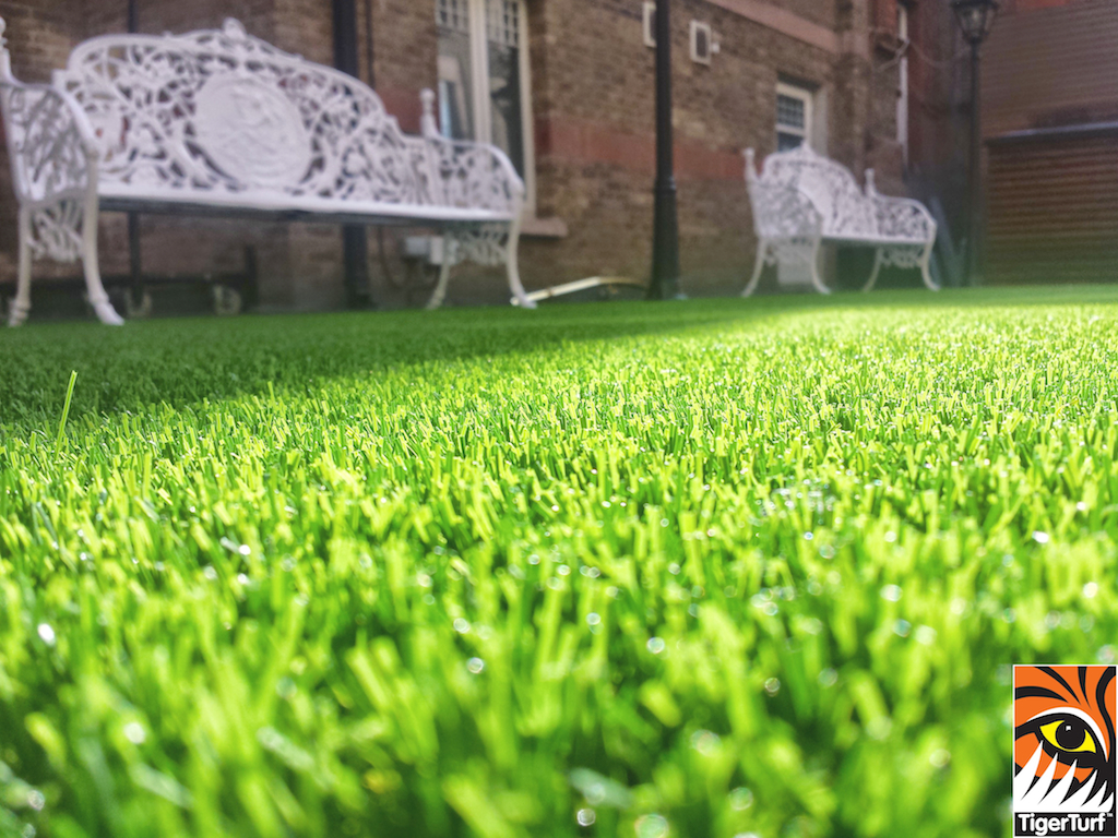 synthetic grass in family garden 70.jpg