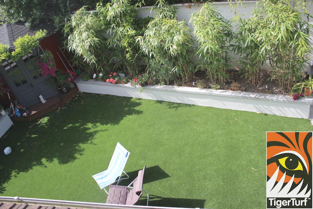 photo above garden