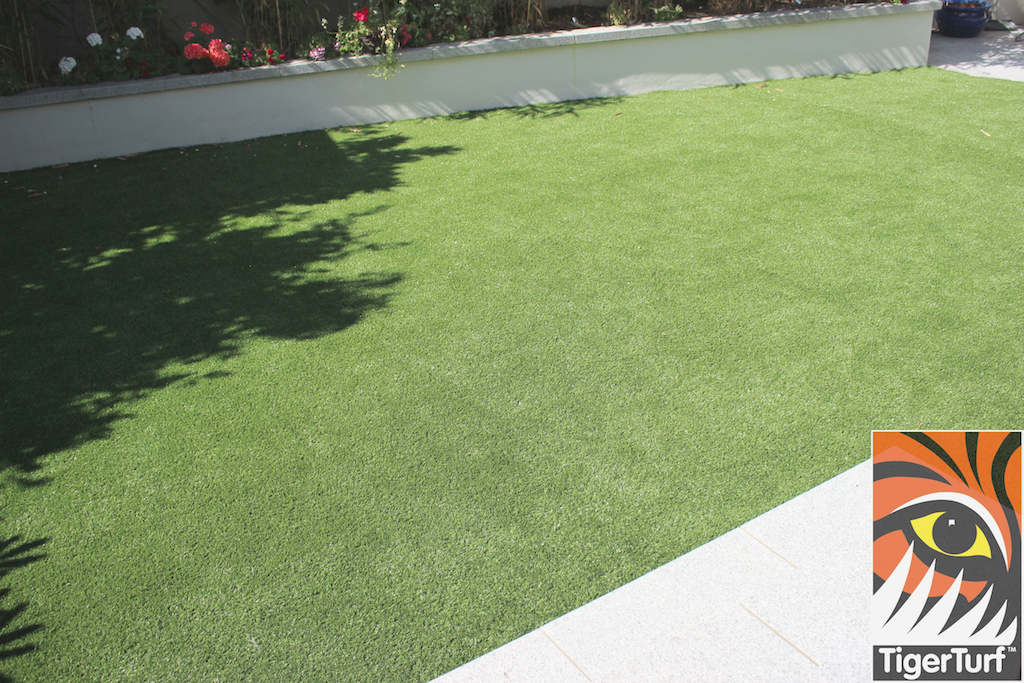 close up of synthetic grass