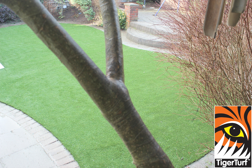 synthetic grass in family garden 117.jpg