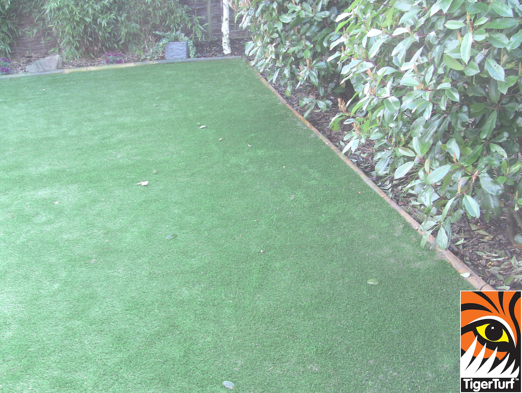 TigerTurf lawn and raised deck