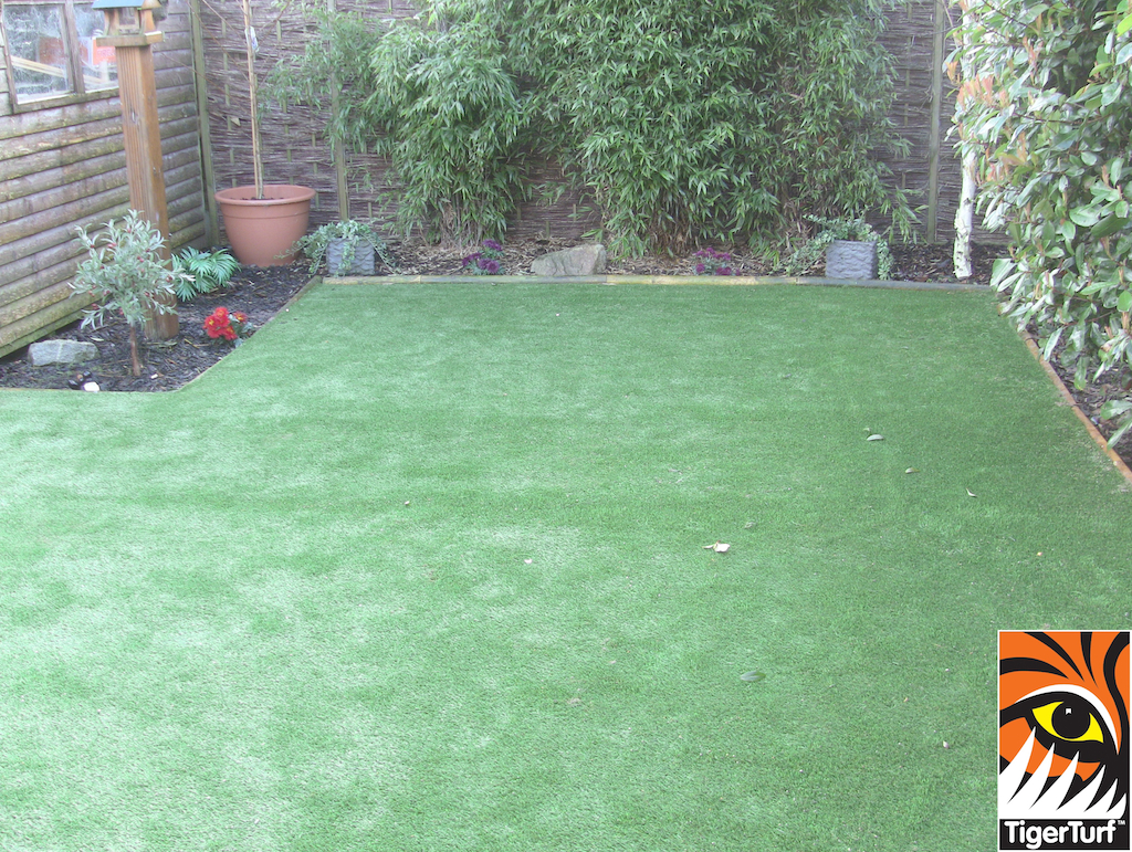 new TigerTurf lawn