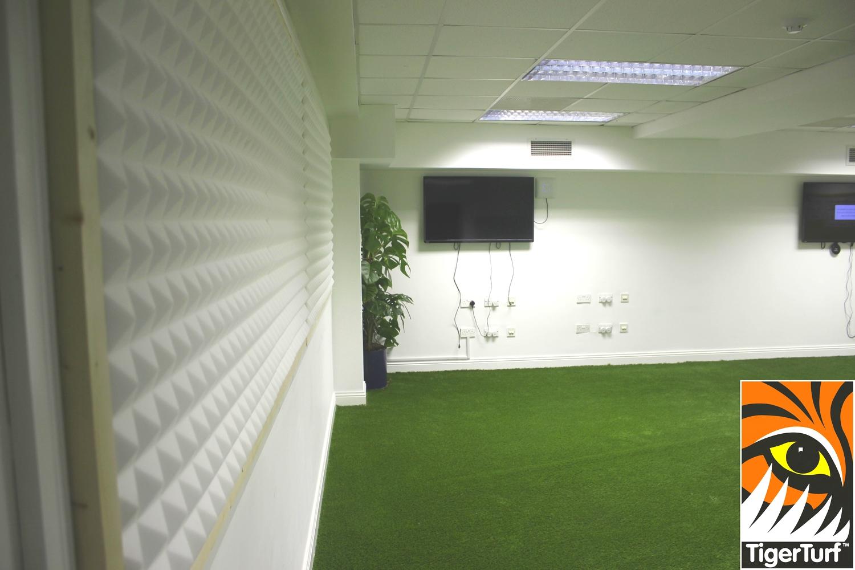TigerTurf and LCD monitors