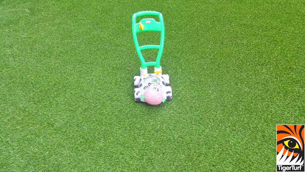 toy on grass
