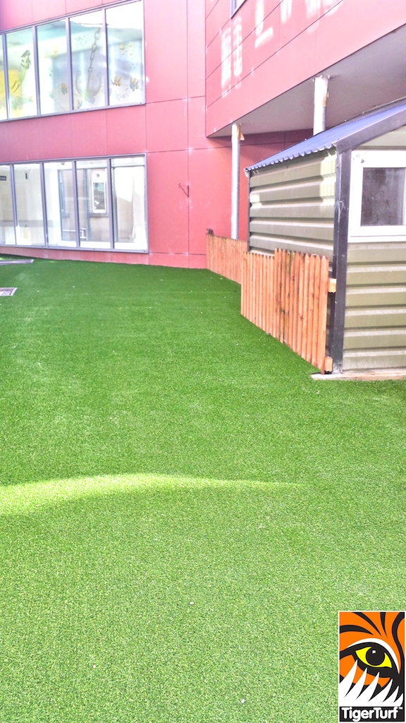 shed and grass beside playground