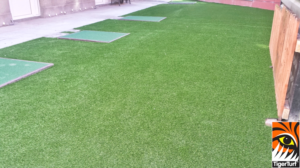 Crumlin hospital new lawn for playground