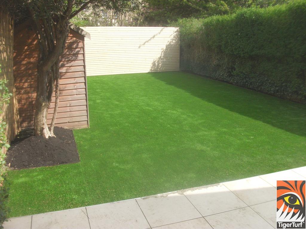 TigerTurf finesse lawn in back garden