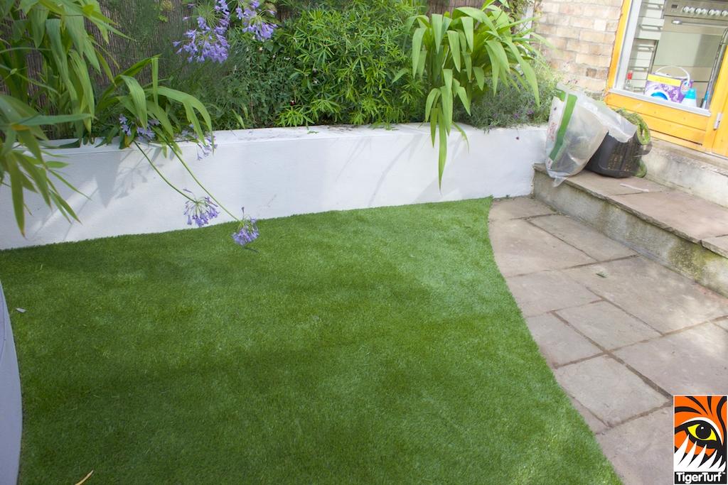 Garden Grass in small Garden