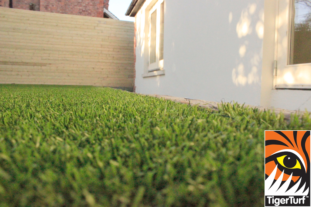 close up of fake grass