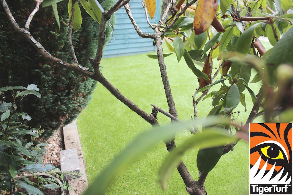 synthetic grass in family garden 84.jpg