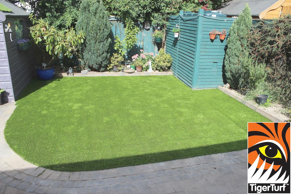 Artificial Grass Lawn