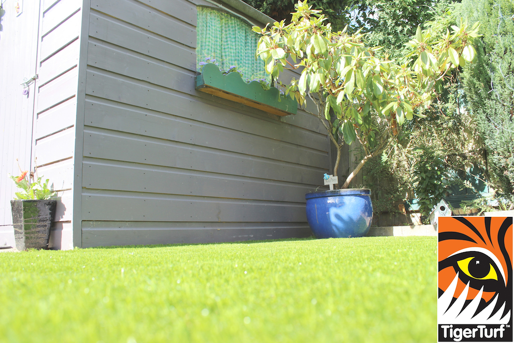 Shed and TigerTurf Lawn