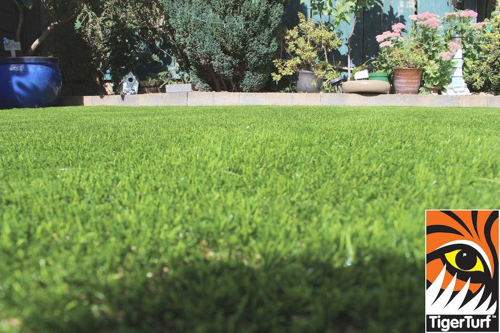 TigerTurf synthetic Grass Lawn
