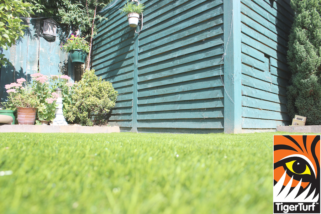 TigerTurf fence and lawn