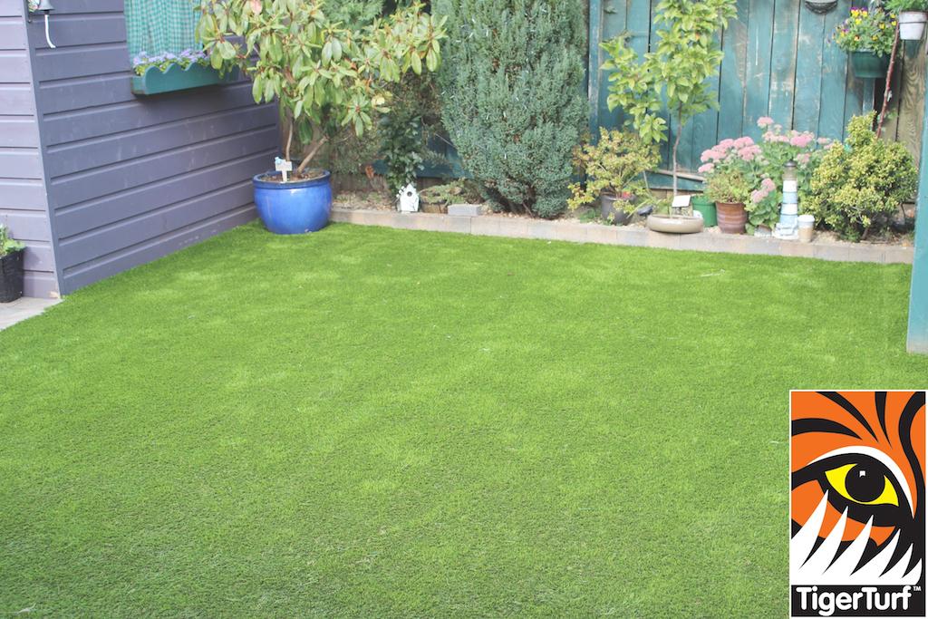 TigerTurf Garden lawn