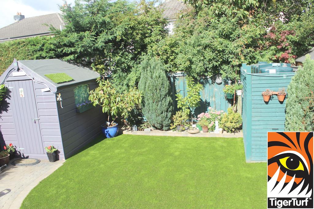 TigerTurf Lawn installation
