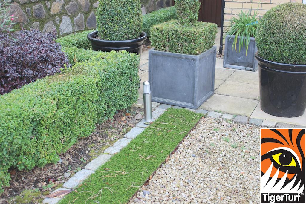 synthetic grass in family garden 41.jpg