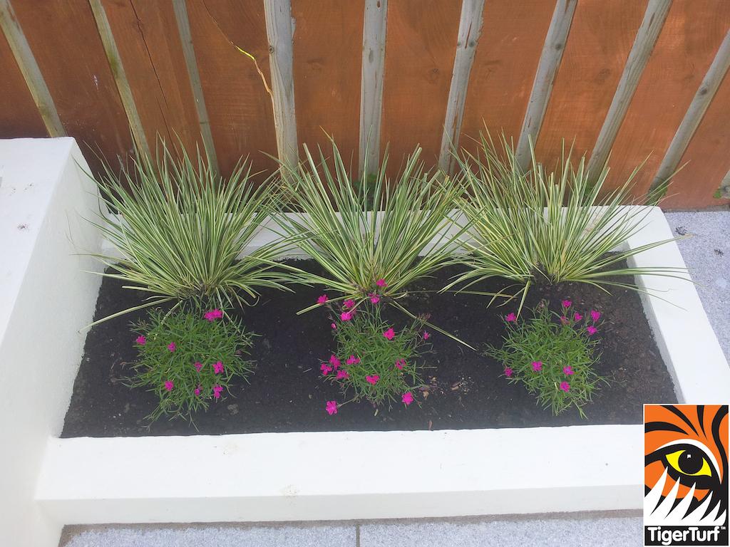 synthetic grass in family garden 12.jpg