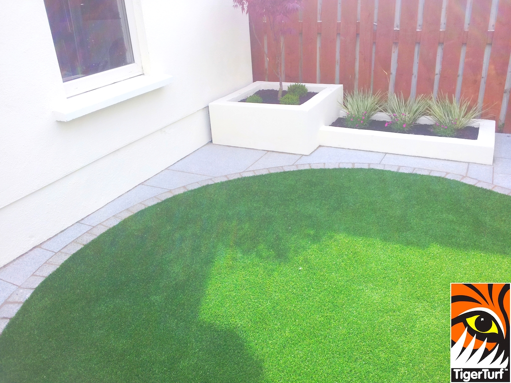 Synthetic lawn and acer