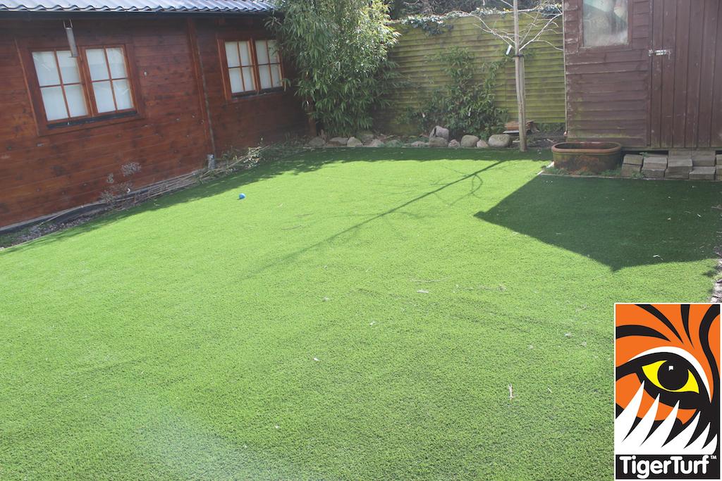 synthetic grass in family garden 43.jpg