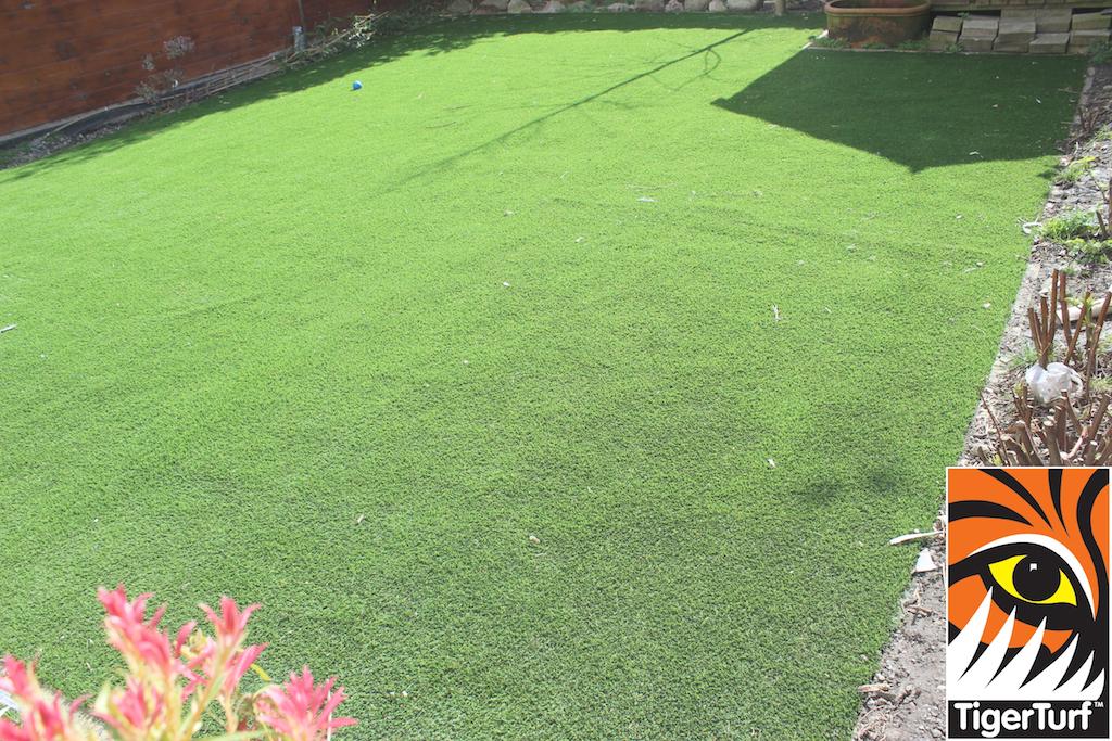 synthetic grass in family garden 42.jpg