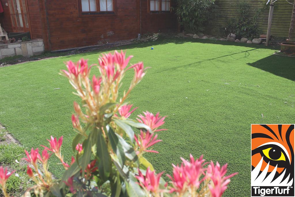 synthetic grass in family garden 40.jpg