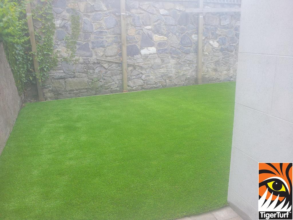 astro garden grass