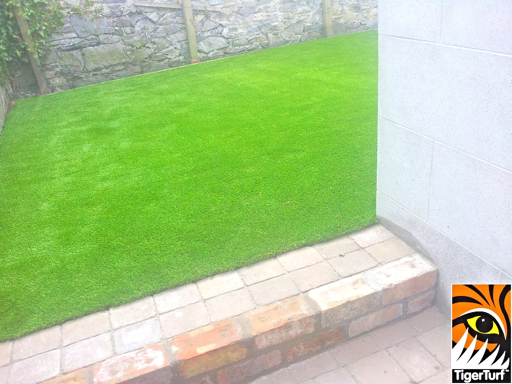 Patio step and Artificial Garden turf