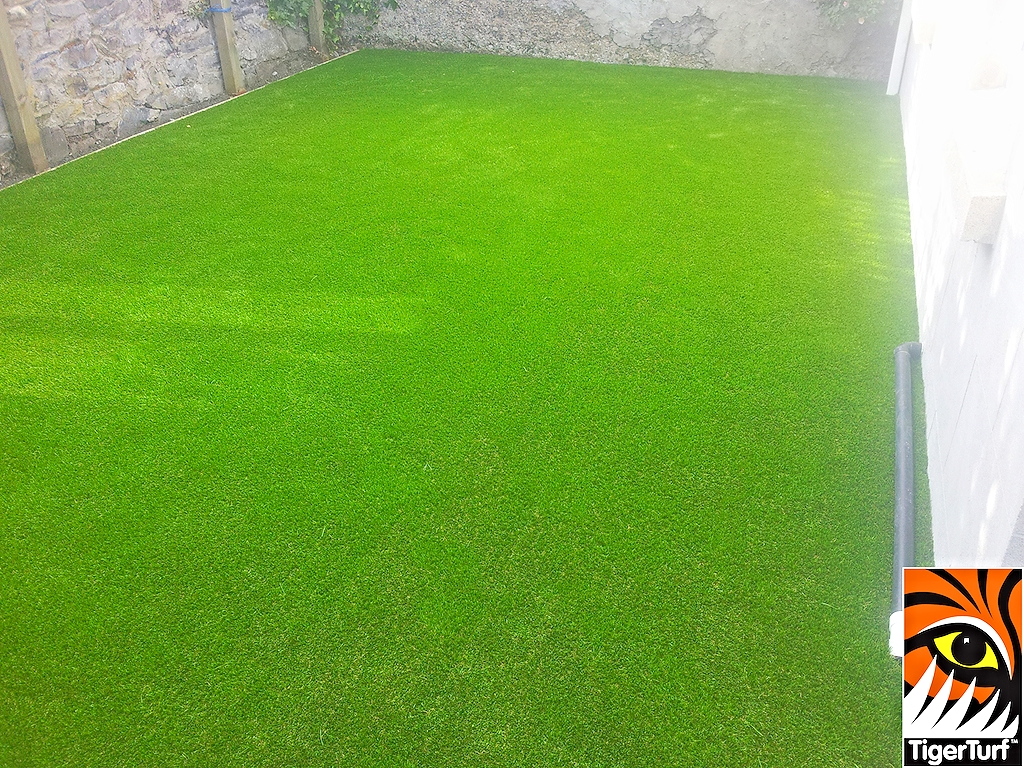 Artificial Astro grass