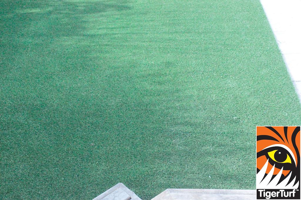 synthetic grass in family garden 8.jpg