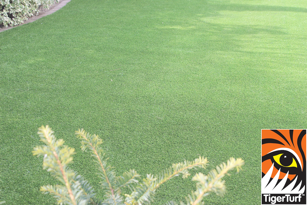 synthetic grass in family garden 15.jpg