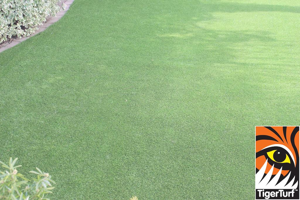 synthetic grass in family garden 17.jpg