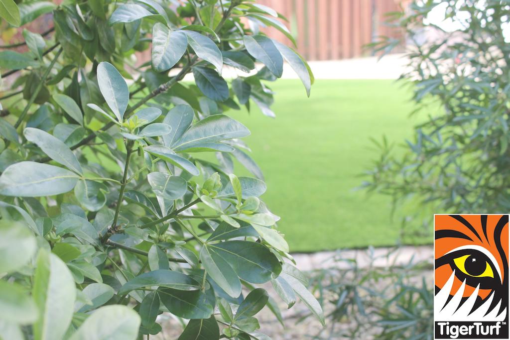 synthetic grass in family garden 32.jpg