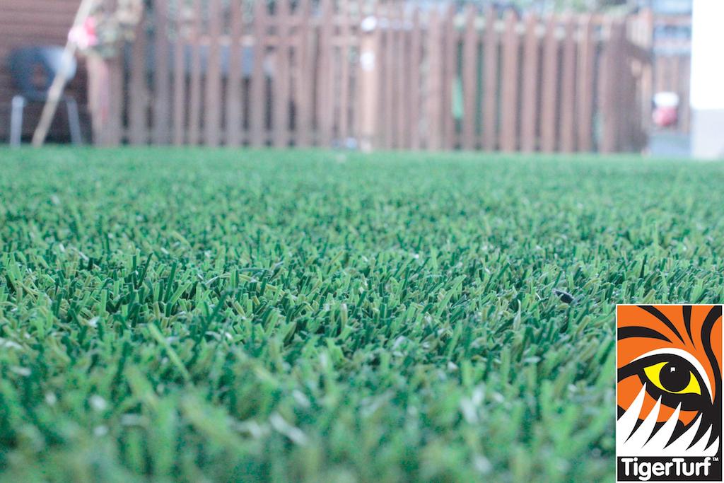 synthetic grass in family garden 46.jpg