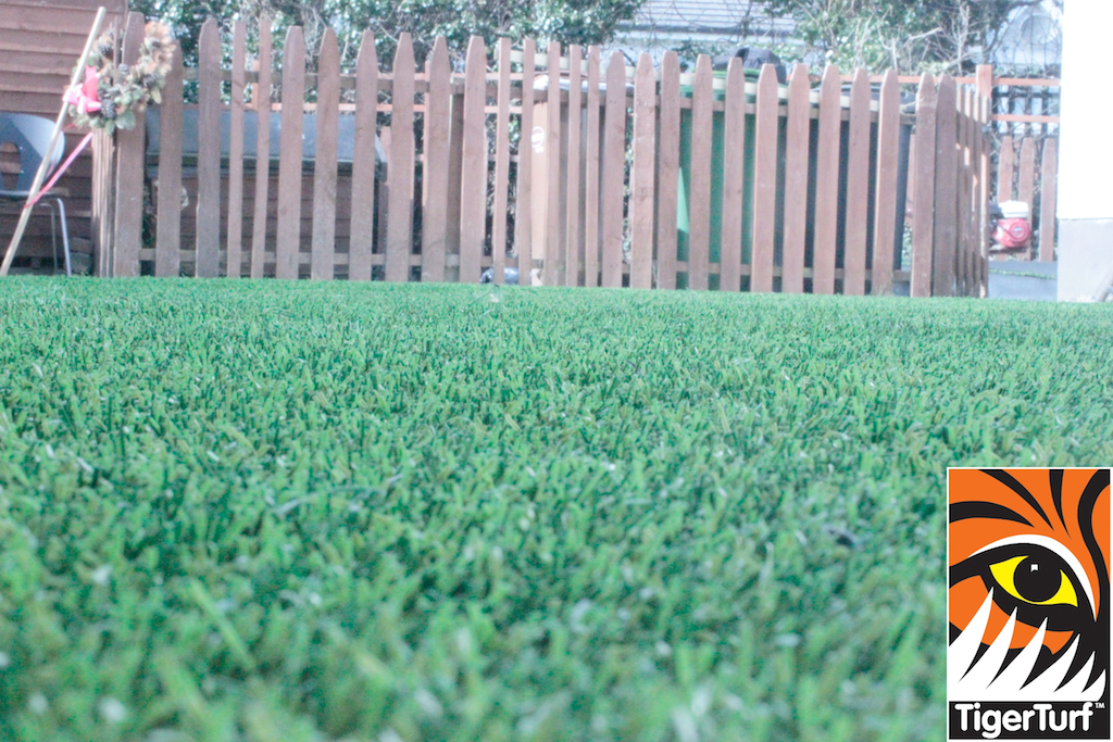 synthetic grass in family garden 50.jpg