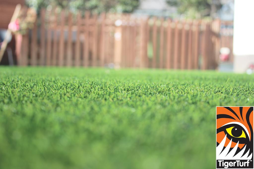 synthetic grass in family garden 51.jpg
