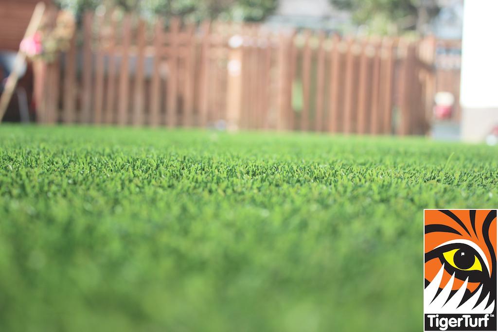synthetic grass in family garden 52.jpg