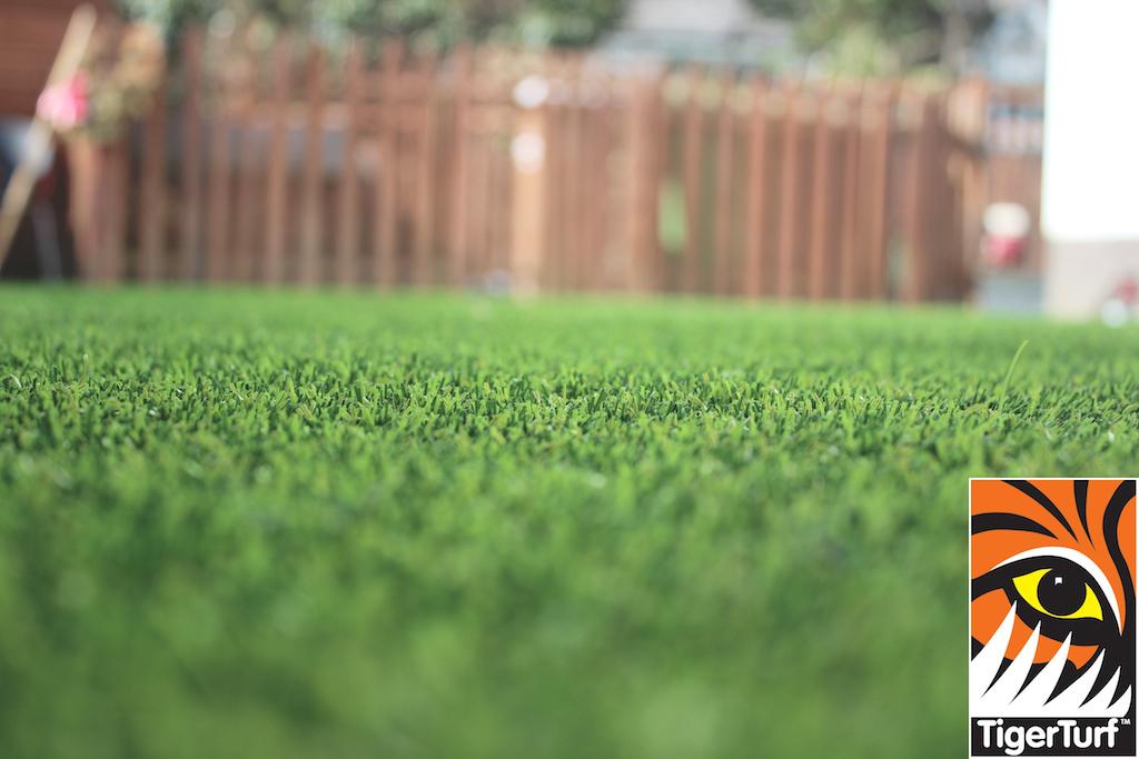 synthetic grass in family garden 55.jpg