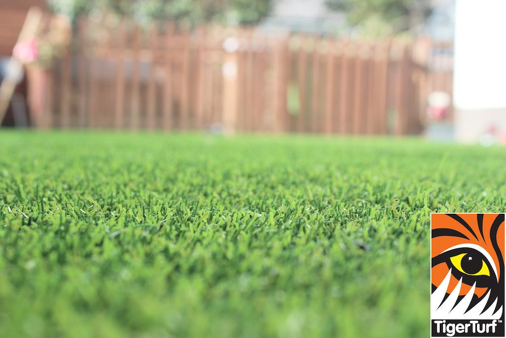synthetic grass in family garden 54.jpg