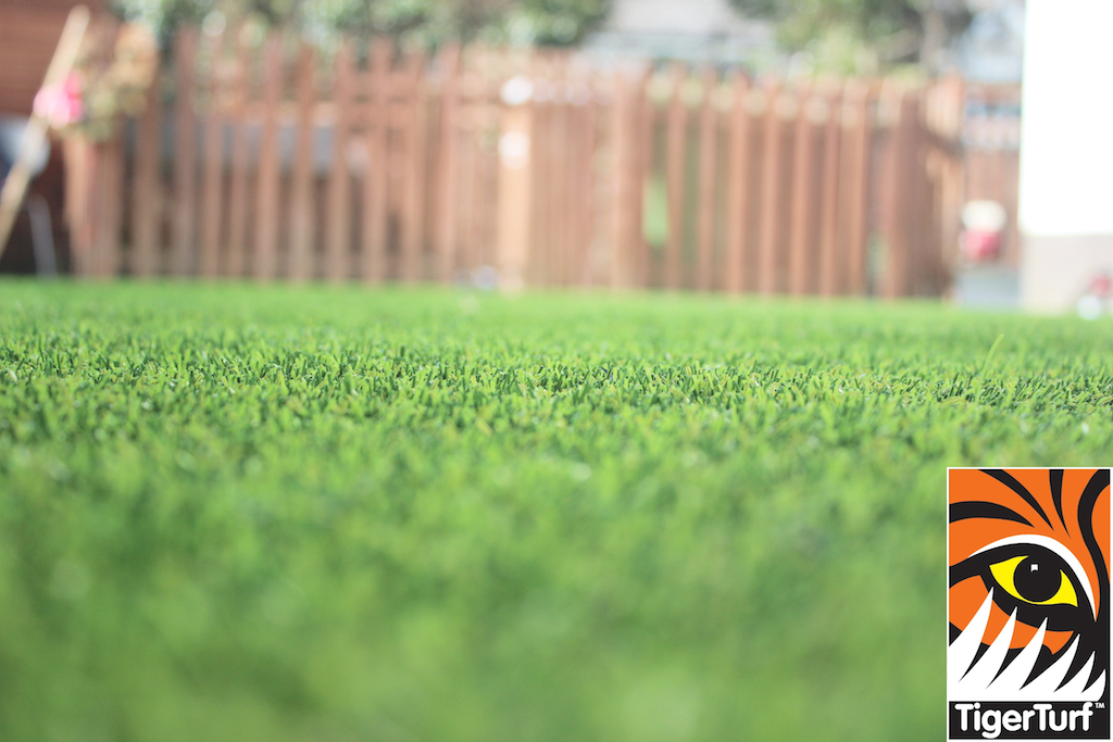 synthetic grass in family garden 56.jpg