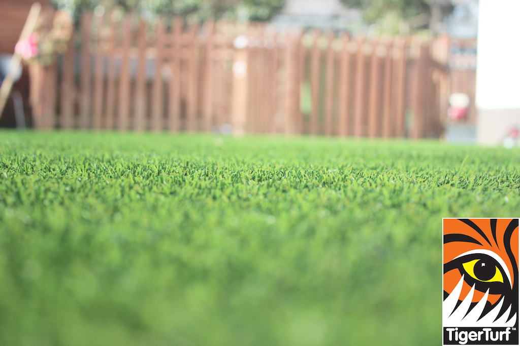 synthetic grass in family garden 57.jpg