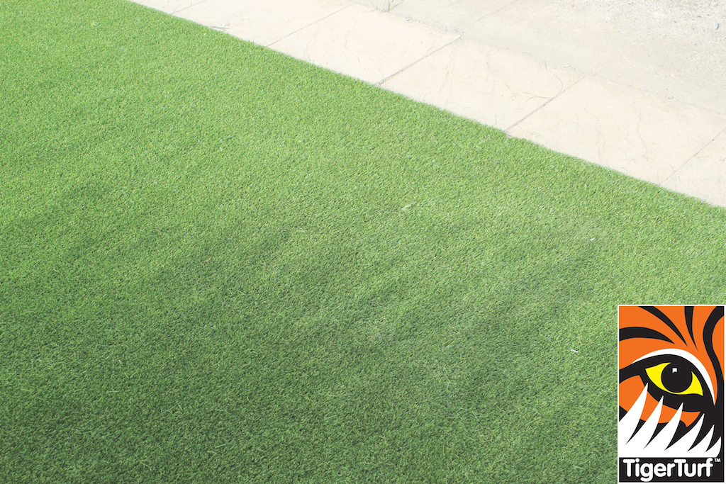 synthetic grass in family garden 61.jpg