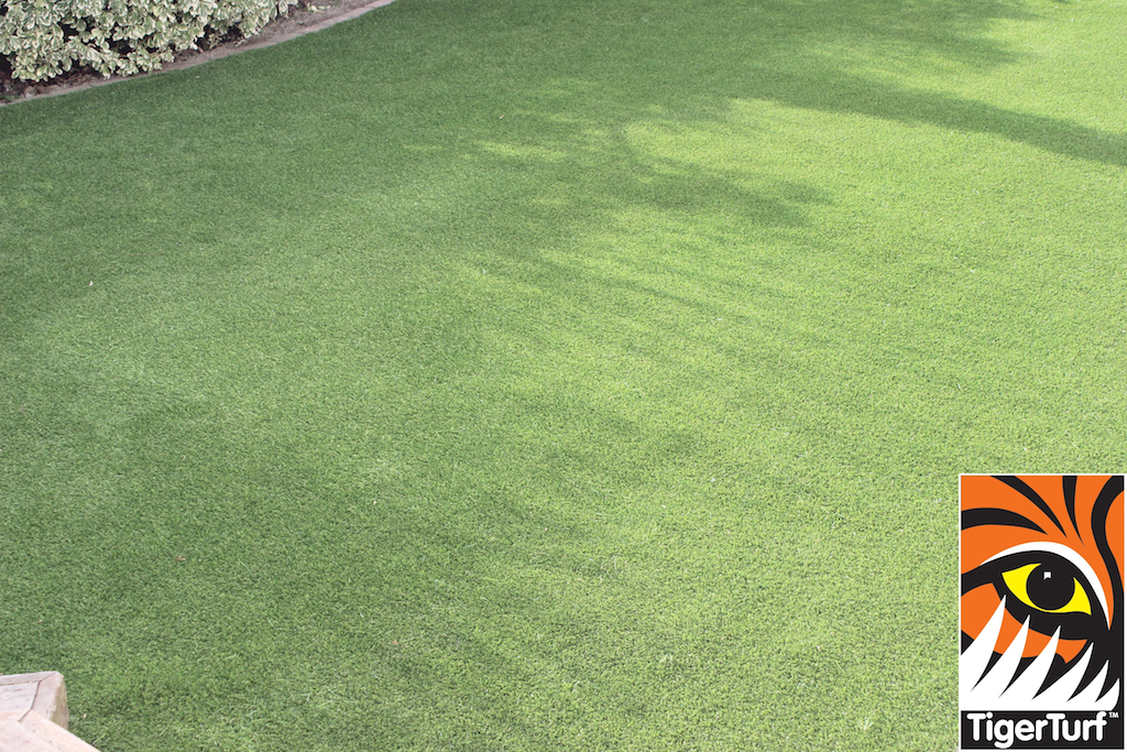 synthetic grass in family garden 63.jpg