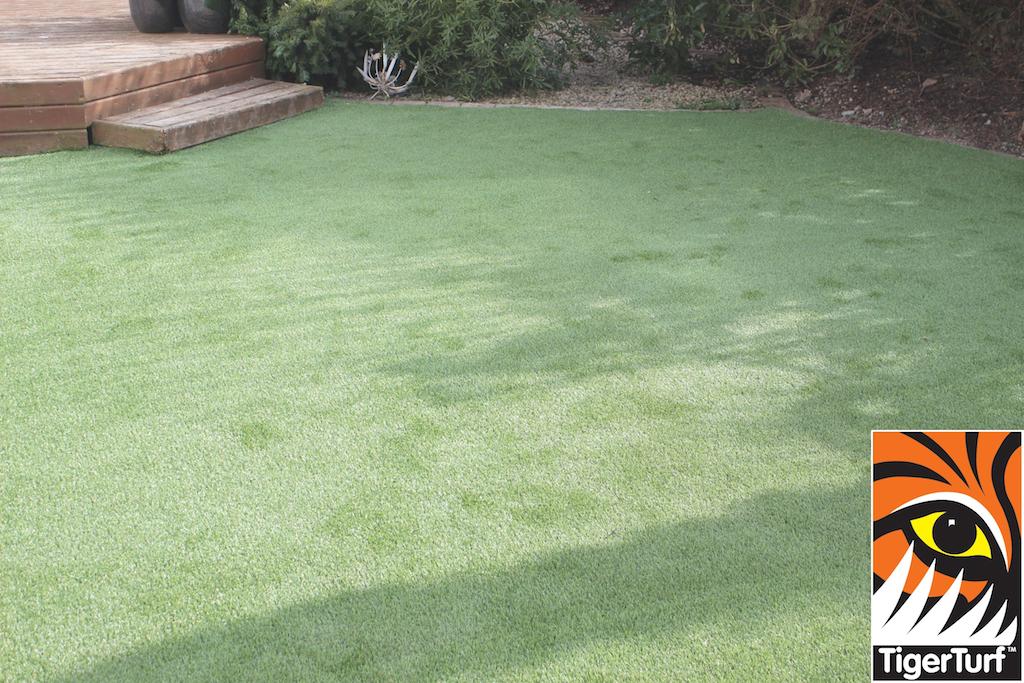 synthetic grass in family garden 69.jpg