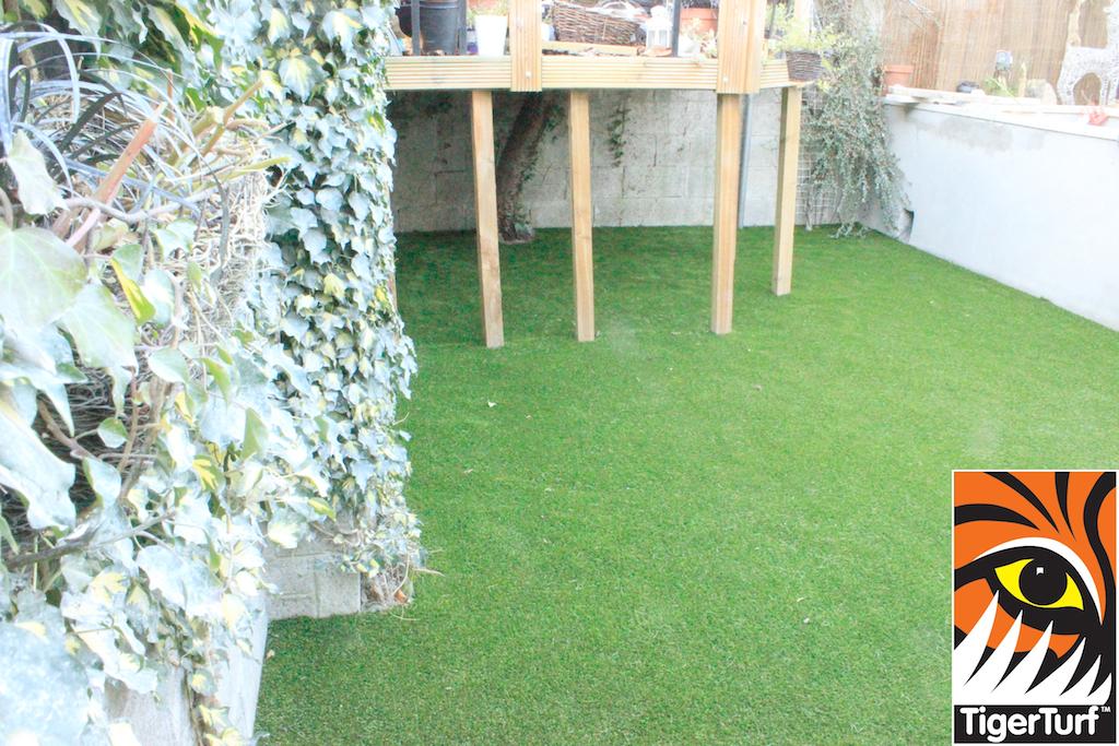 grass installation dublin ireland